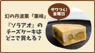 【ザワつく金曜日】栗峰を使った『ソラアオ』のチーズケーキはどこで買える?