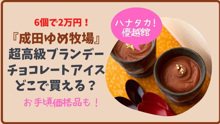【ハナタカ】成田ゆめ牧場の6個で2万円のブランデーチョコレートアイスはどこで買える?通販は